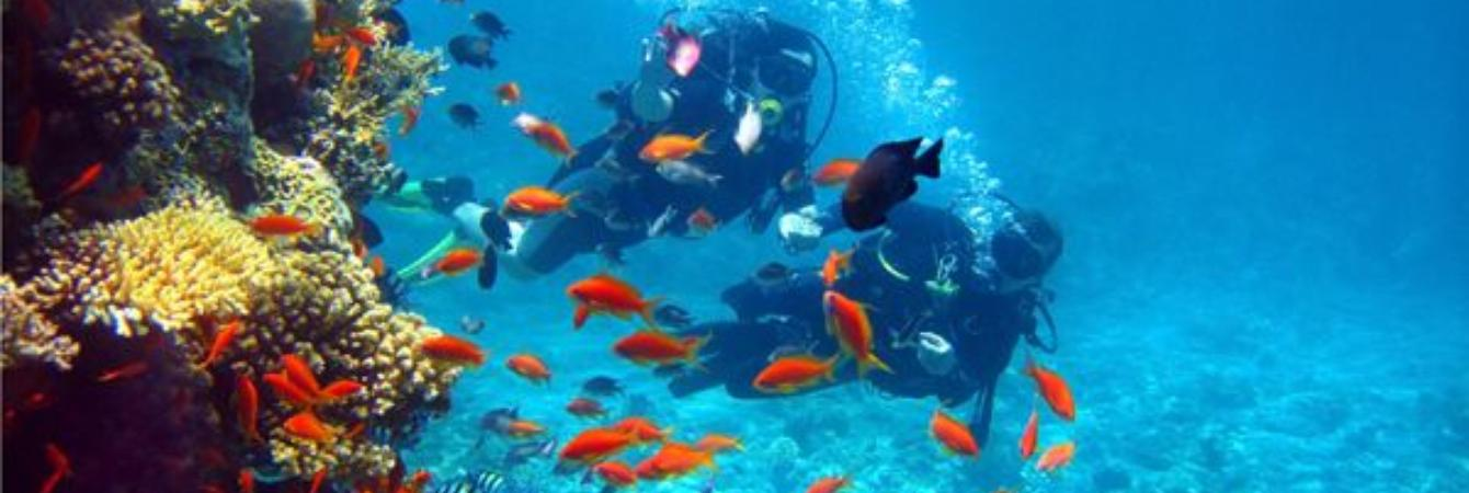 costa rica snorkeling bucket list
