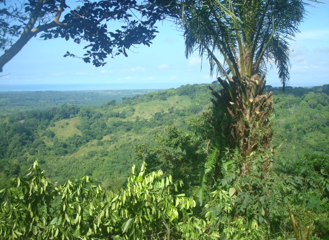 land for sale costa rica 1