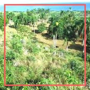 playa grande costa rica land for sale
