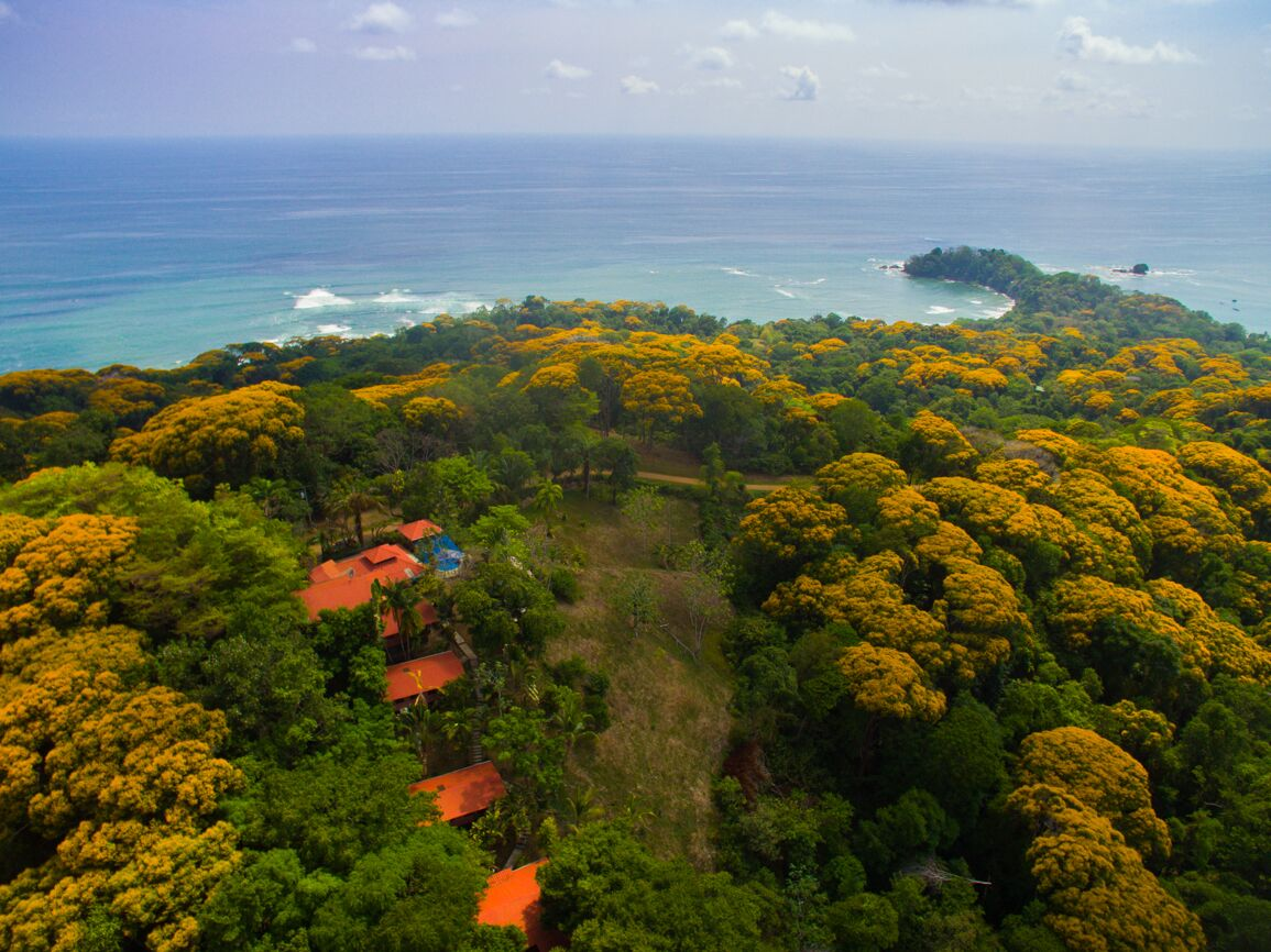 Pacific Edge Eco Lodge Best Views Dominical 1 795 000 00