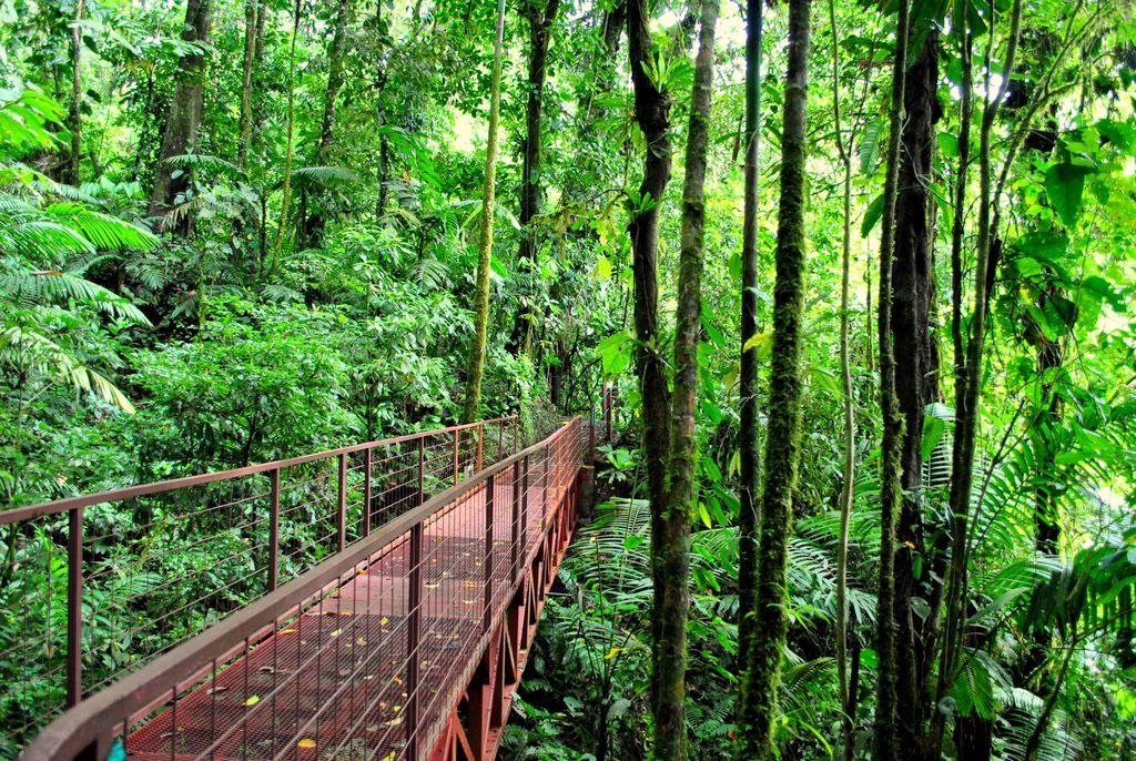 costa rica rainy season 2