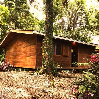 caribbean costa rica home for sale casa chilamate 1