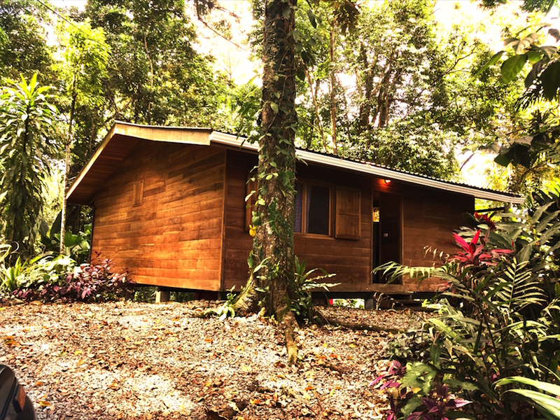 caribbean costa rica home for sale casa chilamate 1