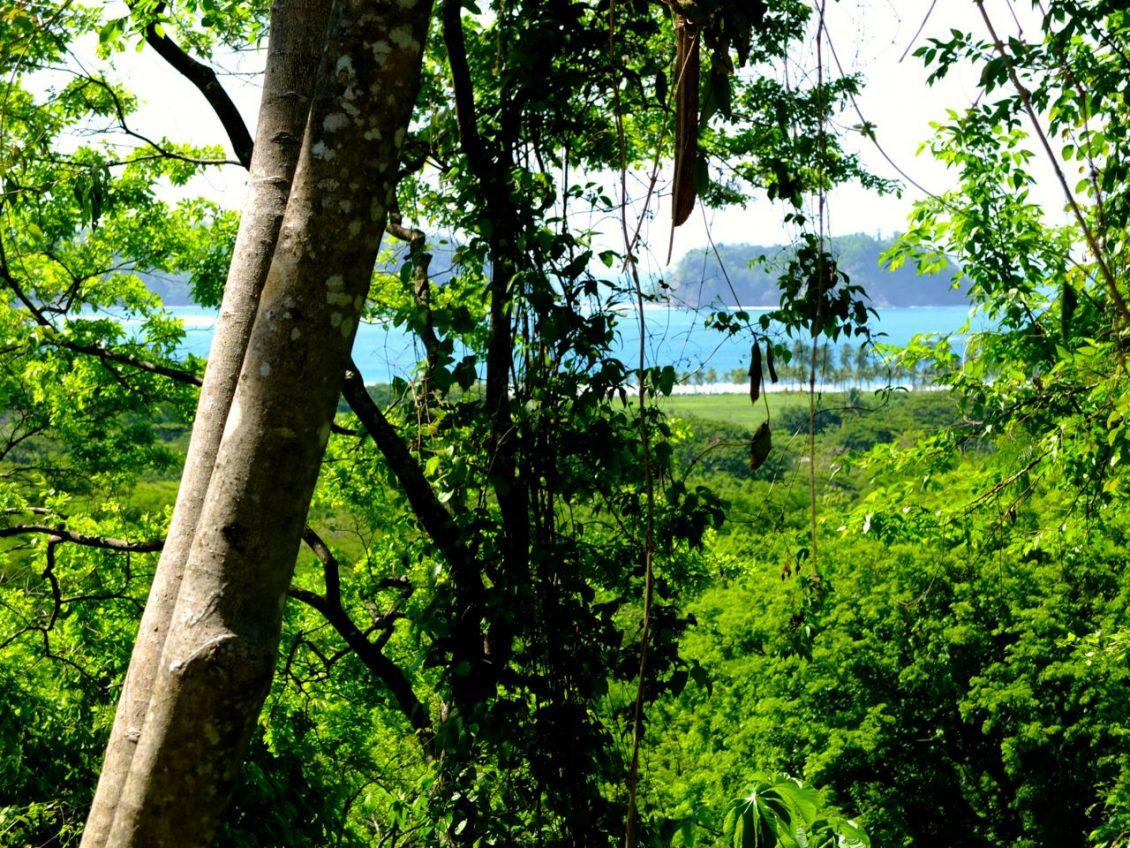 samara costa rica land for sale playa samara 1