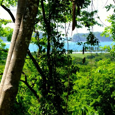 samara costa rica land for sale playa samara 1