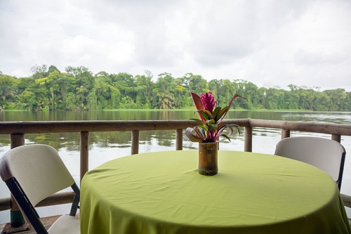 48539273 - outdoor restaurant table among the nature