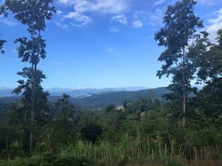 Costa rica farm for sale limon 3