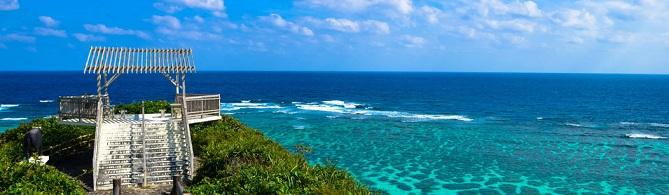 blue zones okinawa japan