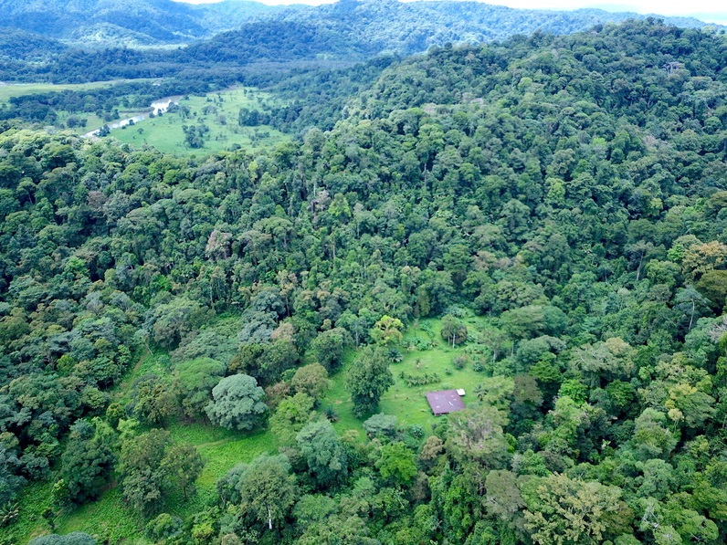 costa rica farm for sale puerto jimenez 13