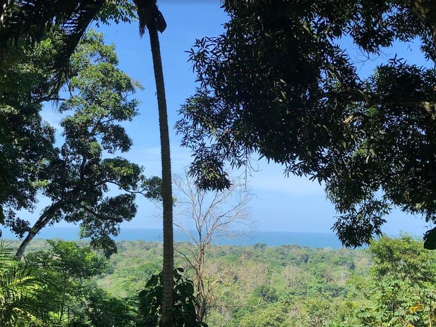 cahuita costa rica home for sale ocean view retreat 2