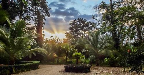 jungle gem 240000usd casa view